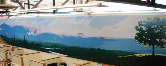 Full Wall Mural Acoustic Panels