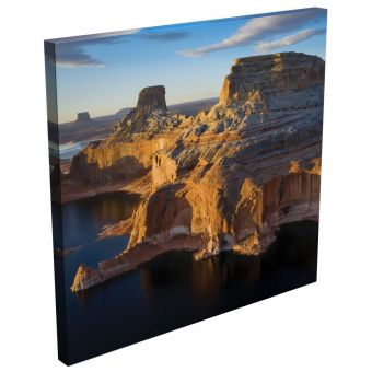 Artist Series Acoustic Image Panels - Dan Krauss